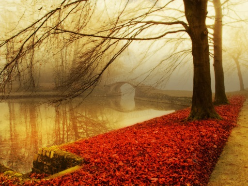 autumn - puente